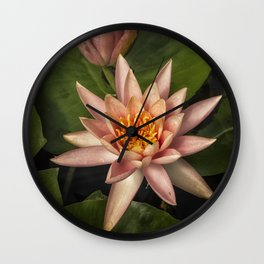 Coral Pink Water Lilies Wall Clock