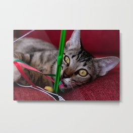 Cat Fishing Metal Print