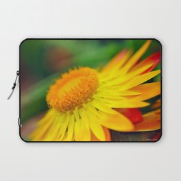 Yellow and Red Flower Macro Phot Laptop Sleeve