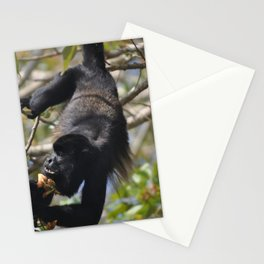 Panama Howler in the Canal Stationery Cards