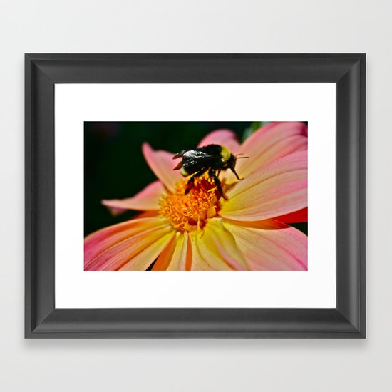 Winged Flower 01 Framed Art Print