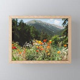 Mountain garden Framed Mini Art Print