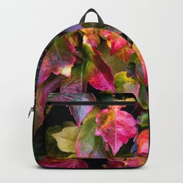 Boston Ivy Beauty Backpack