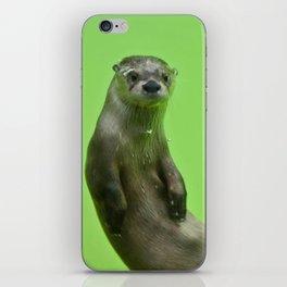Green Otter iPhone Skin