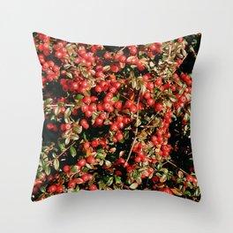 Little Red AbunDance Throw Pillow