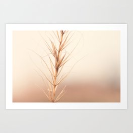Simple Beauty Art Print