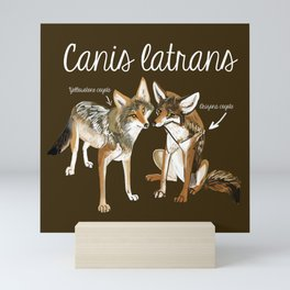 Coyotes in love Mini Art Print