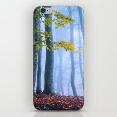 Mysterious Woods iPhone & iPod Skin