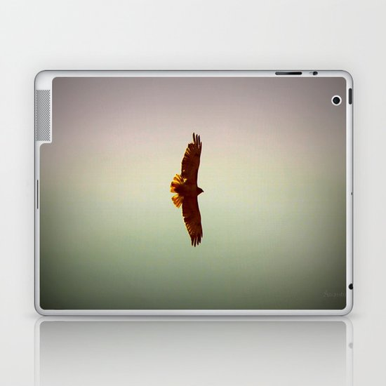 Hawk Eyes Laptop & iPad Skin