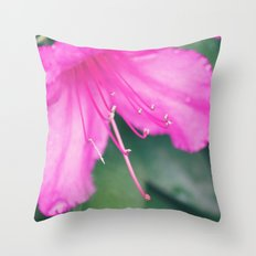 Center of It All Throw Pillow