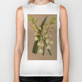 Aendsen, Arentine H. (1836-1915) - Haarlem's Flora 1872 - Hyacinthus Candicans Biker Tank