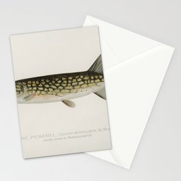 Pickerel (Lucius Reticulatus. Le Sueur from a pond in Massachusetts) illustrated by Sherman F. Dento Stationery Cards