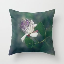 Caper flower Throw Pillow
