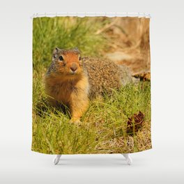 Twitchy Nosed Columbian Ground Squirrel Shower Curtain