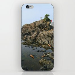 Tidal Wash iPhone Skin