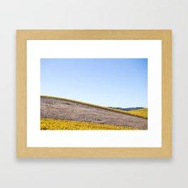 Santa Ynez Valley Framed Art Print