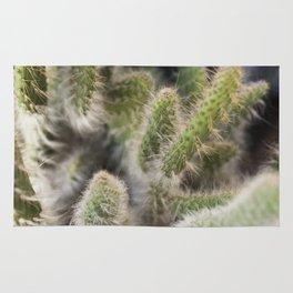 Hairy Cactus 1 Rug
