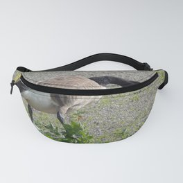 Canada Goose Fanny Pack