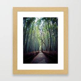 Bamboo path Framed Art Print