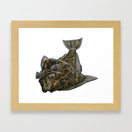 Halibut Framed Art Print