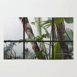 Window Garden Rug