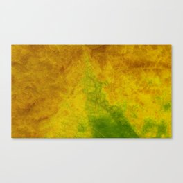 Nature color Canvas Print