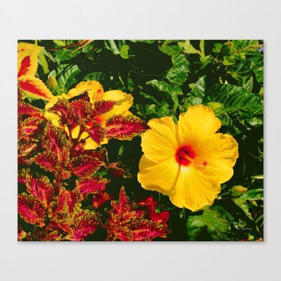 Hibiscus and Coleus Canvas Print