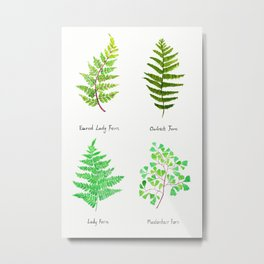 fern collection watercolor Metal Print