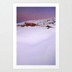 Soft snow at sunset Art Print
