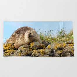 Seal at Dunvegan Castle, Scotland Beach Towel