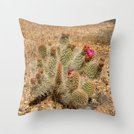 Desert Cacti in Bloom Throw Pillow