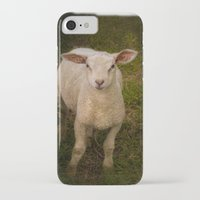 lamb iPhone & iPod Cases featuring Lamb by Guna Andersone & Mario Raats - G&M Studi