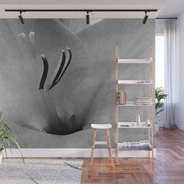 White Gladioli Wall Mural