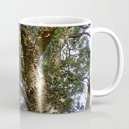 Cork Oak Tree Branches Coffee Mug