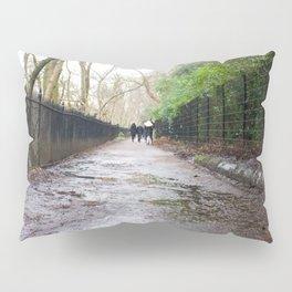Water of Leith Edinburgh 1 Pillow Sham