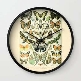 Vintage Butterfly Diagram // Papillions by Adolphe Millot 19th Century Science Textbook Artwork Wall Clock