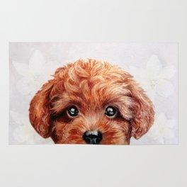 Toy poodle- red, brown Rug