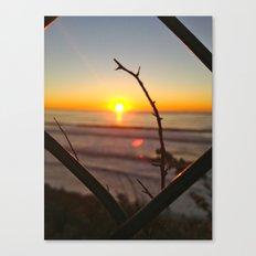 Uncaged Sunset Canvas Print