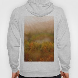 Fairy tale forest of my home Hoody