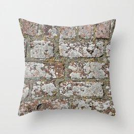 old wall bricks Throw Pillow