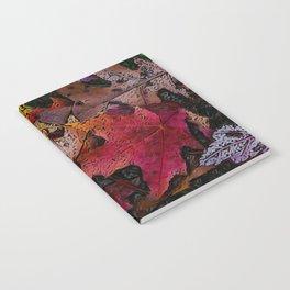 Fallen Leafs Notebook