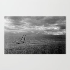 Field of Green Canvas Print