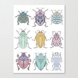 Beetle Grid Canvas Print