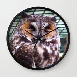 Long Eared Owl II Wall Clock