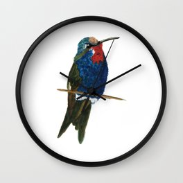 Blue-tufted Starthroat Wall Clock