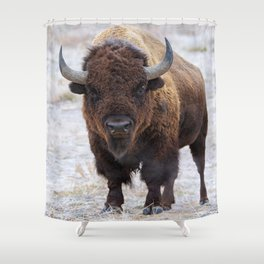 In The Presence Of Bison #society6 #decor #bison by Lena Owens @OLena Art Shower Curtain