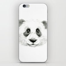 Giant Panda portrait SK063 iPhone & iPod Skin