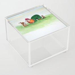 Eye to eye Leprechaun and Rabbit Acrylic Box