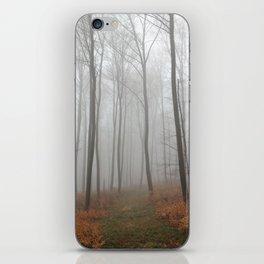 Nebel 2 iPhone Skin