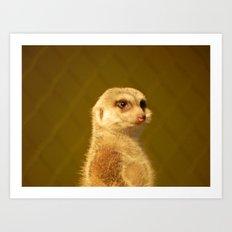 Meerkat Manor Art Print